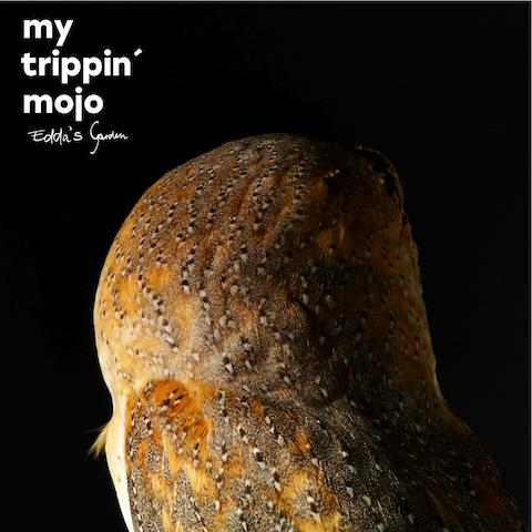 my-trippin-mojo_eddas-garden_cover
