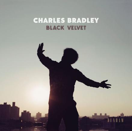 CB-Black Velvet